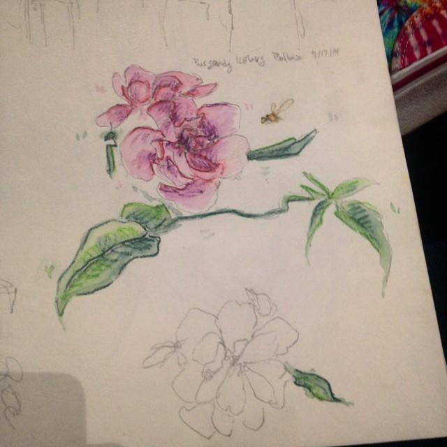 Flower 2014-08-21