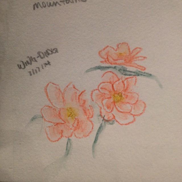 Flower 2 2014-08-21